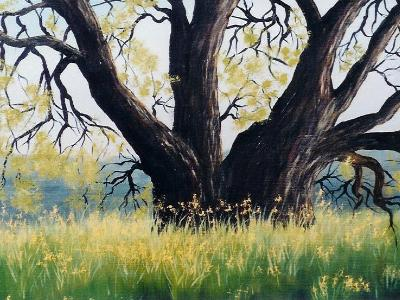 "Danville Oak  10x10""  oil on canvas   SOLD"