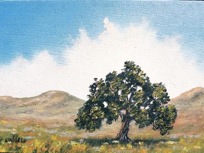 "Lone Oak  5x7""  oil on canvas SOLD"