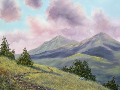 Mt. Diablo's North Peak  24x30   $895